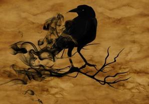 raven-1002849_960_720